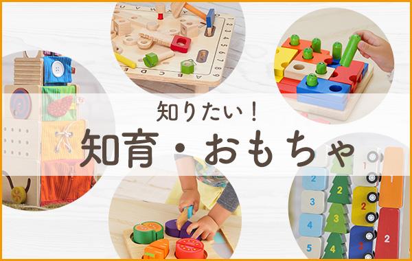 知りたい!知育・おもちゃ