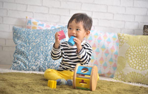 0歳のお誕生日には転がしても遊べる木のおもちゃ「KOROKOROパズル」